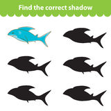 Children`s educational game, find correct shadow silhouette. Shark, set the game to find the right shade. Vector illustration.  Royalty Free Stock Photos