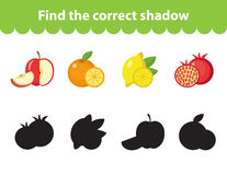 Children s educational game, find correct shadow silhouette. Vector illustration Royalty Free Stock Image