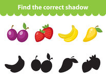 Children s educational game, find correct shadow silhouette. Vector illustration. Children s educational game, find correct shadow silhouette. Fruit set the game Stock Images