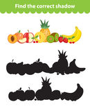 Children s educational game, find correct shadow silhouette. Vector illustration. Children s educational game, find correct shadow silhouette. Fruit set the game Royalty Free Stock Image