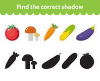 Children s educational game, find correct shadow silhouette. Vector illustration. Children s educational game, find correct shadow silhouette. Vegetables set the Royalty Free Stock Images