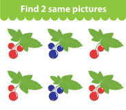 Children`s educational game. Find two same pictures. Set of currants, for the game find two same pictures. Vector illustration. Children`s educational game Stock Images