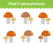 Children`s educational game. Find two same pictures. Set of mushrooms, for the game find two same pictures. Vector illustration. Children`s educational game Royalty Free Stock Image