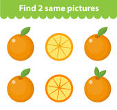 Children`s educational game. Find two same pictures. Set of orange, for the game find two same pictures. Vector illustration. Children`s educational game. Find Royalty Free Stock Photo