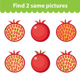 Children`s educational game. Find two same pictures. Set of pomegranate, for the game find two same pictures. Vector illustration. Children`s educational game Royalty Free Stock Images