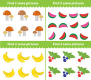 Children s educational game. Find two same pictures. Vector illustration. Childrens educational game. Find two same pictures. Vector illustration Royalty Free Stock Photos