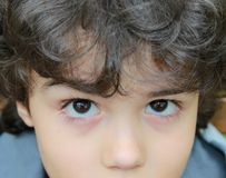 Children' s eyes. Close portrait of big charming children's eyes Stock Image