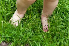 Children's feet in the grass on the lawn Royalty Free Stock Photo