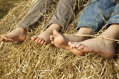 Children's feet in the hay Stock Image