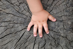 Children's hand. Is located on an old stump Stock Images