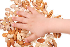 The children's hand holds nuts Stock Images