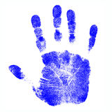 Children's Hand Prints. Child's Isolated Blue Hand Prints Stock Images