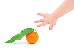 Children's hand and tangerine Royalty Free Stock Image