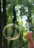 Children's hand with two soap bubbles on the background of the forest. Royalty Free Stock Photos