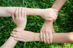 Children's hands. Four childen's hand stock image