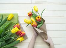 Children`s hands collect a bouquet as a gift. A gift for mom. Royalty Free Stock Photography