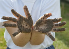 Children's hands dirty from the soil Stock Photography