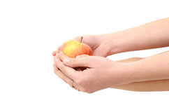 Children's hands give an apple isolated on white background stock image
