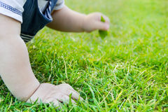 Children's hands on the grass, the concept of learning to crawl baby,  hygiene Stock Photo