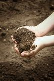 Children`s hands hold in a handful of brown soil that falls slightly down royalty free stock image