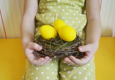 Children`s hands holding a bird`s nest. Nest with yellow eggs. Yellow background. royalty free stock image