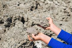 Children`s hands holding pieces of dry ground stock photography