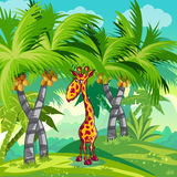 Children's illustration of the jungle with a giraffe Royalty Free Stock Images