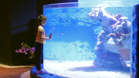 Children`s impressions of the underwater world and its inhabitants stock video