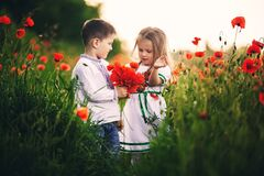 Children`s love, a little boy and a girl, amicably spend time, laugh and smile, and kiss in the flowering field of poppies