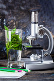 Children's microscope in still life table leaves, plant, foliage, biology, pencils, notebook Royalty Free Stock Image