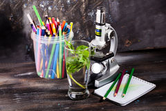 Children's microscope in still life table leaves, plant, foliage, biology, pencils, notebook Stock Image