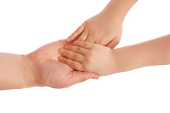 Children's palms in a reliable man's hand. On white stock image