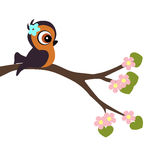Children`s poster cartoon style bird on a blossoming tree branch Stock Photos