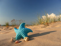 Children's toy on sand. Royalty Free Stock Images