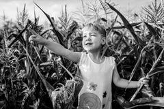 Children`s walk in corn. the girl in the corn. adventures Royalty Free Stock Photos