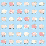 Children's wallpaper with sheep. Baby blue wallpaper with sheep Royalty Free Stock Image