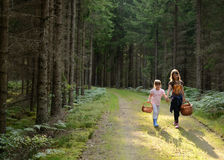 Children's way back from forest Stock Photos