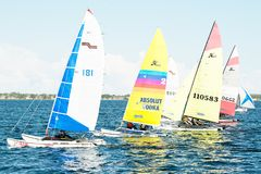 Children sailing competition in dinghies. royalty free stock photo