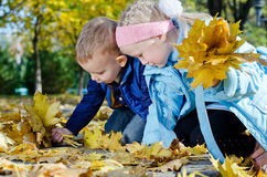 Children searching for autumn leaves. Two cute young children kneeling on the ground in a park searching for perfect autumn leaves to add to their collection stock image