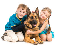 Children with a shepherd dog Stock Photo