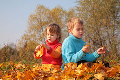 Children sit on fallen maple leaves Royalty Free Stock Photography