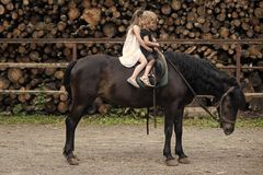 Children sit in rider saddle on animal back. Girls ride on horse on summer day. Friend, companion, friendship. Sport, activity, entertainment. Equine therapy stock images