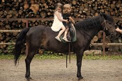 Children sit in rider saddle on animal back. Girls ride on horse on summer day. Friend, companion, friendship. Equine therapy, recreation concept. Sport stock image