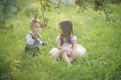 Children sit under apple tree in summer park stock photos