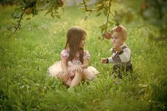 Children sit under apple tree in summer park. Concept of children on summer vacation royalty free stock photography