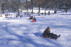 Children sled riding in Central Park, Manhattan, New York City, NY after winter snow storm Royalty Free Stock Image