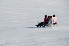 Children on sledge. Four children on a sledge, Greenland royalty free stock image