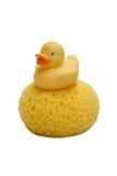 Children'ssponge und Ente getrennt auf Weiß Lizenzfreie Stockbilder