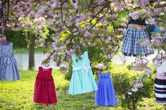 Children suknie na drzewie Fotografia Stock