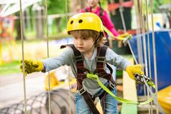 Children summer activities. High ropes walk. Every childhood matters. Happy little boy calling while climbing high tree. And ropes. Safe Climbing extreme sport royalty free stock image